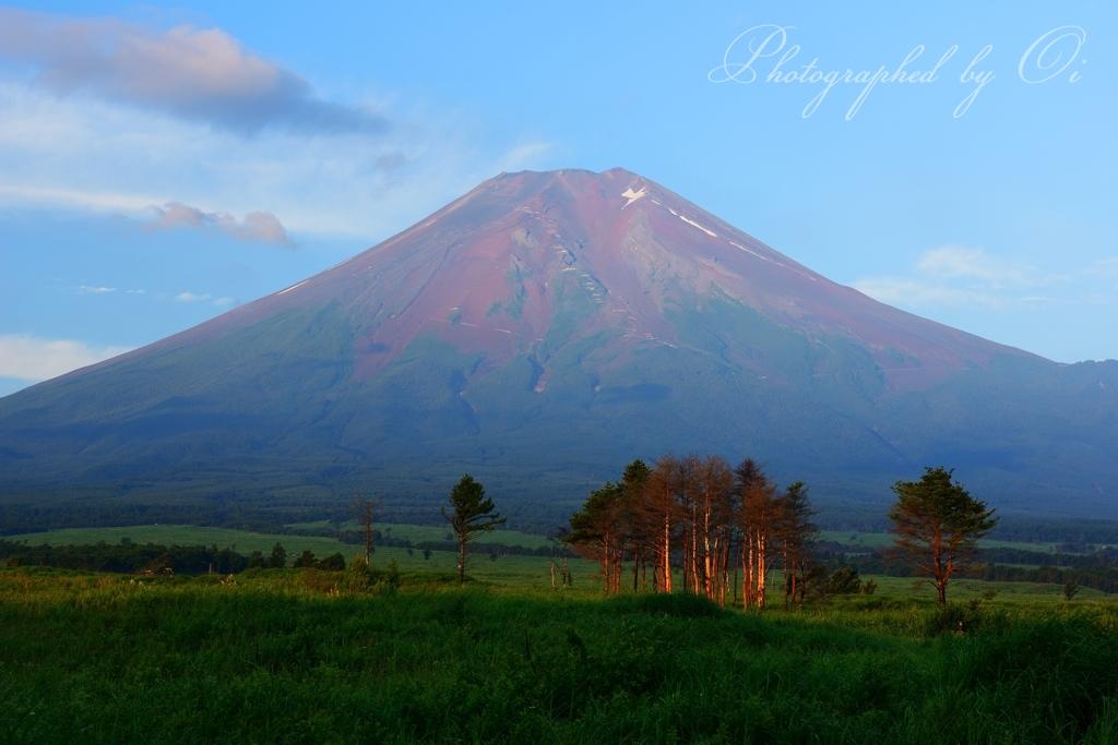 赤富士の画像 p1_5